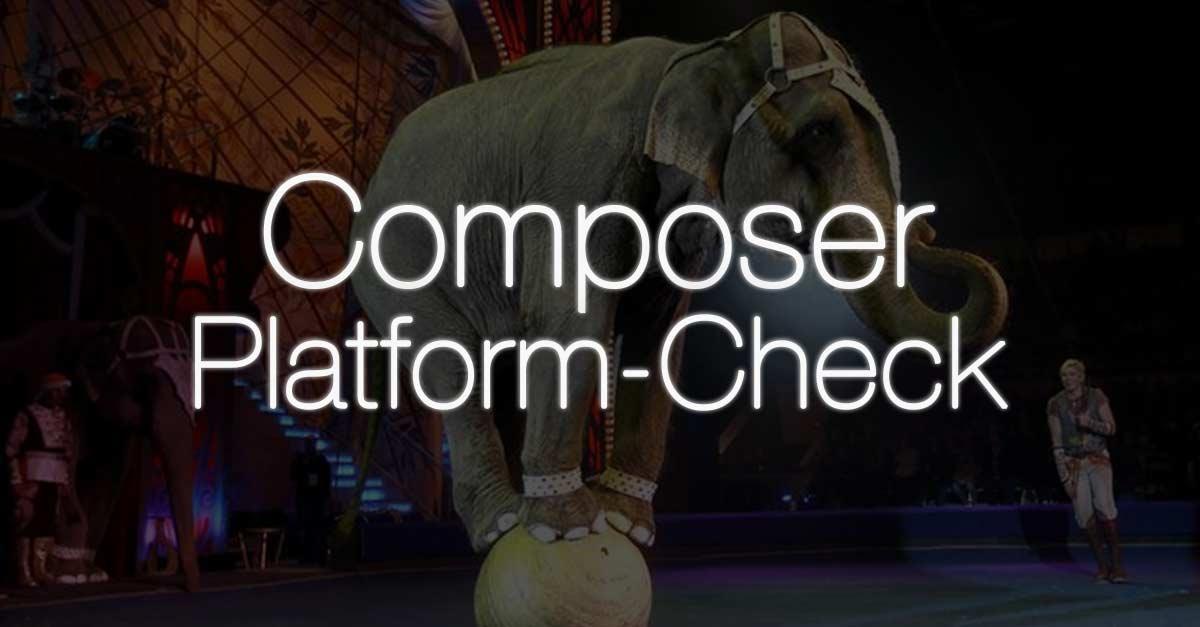 Composer 2: Platform Check